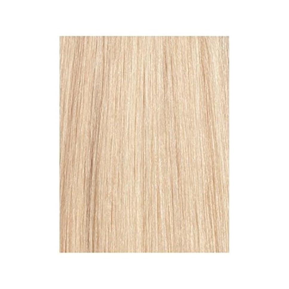 少数血統二十ラ?ブロンド24分の613 - 美しさは、100%レミーの色見本ヘアエクステンションの作品 x2 - Beauty Works 100% Remy Colour Swatch Hair Extension - La Blonde 613/24 (Pack of 2) [並行輸入品]