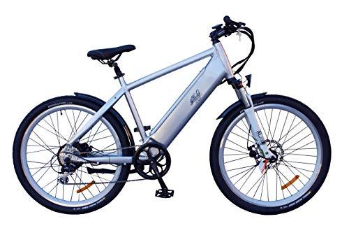 Rodars Pedelec eBike Trekking Bicicleta Eléctrica Crosscountry 250W 11Ah Samsung Autonomía 50-70km...