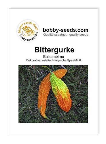 Bittergurke Momordica Ziergurkensamen von Bobby-Seeds Portion