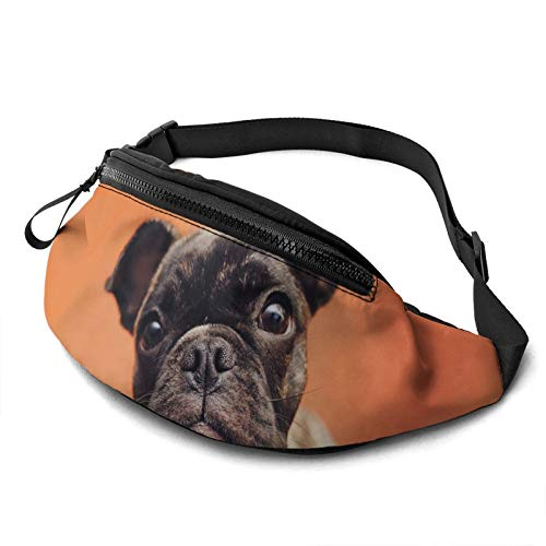 french bulldog Fanny Pack for Men Women, Adjustable Waist Pack with Headphone Hole Casual Bag for Travel Hiking Sports Running