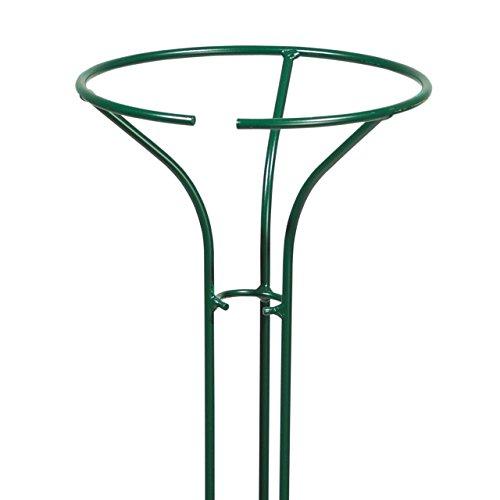 Videx Rosenständer Ruby, Höhe 170cm, grün