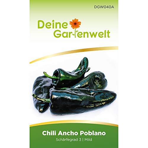 Chili Ancho Poblano   Samen für scharfe Chilis   Chilisamen   Anchosamen