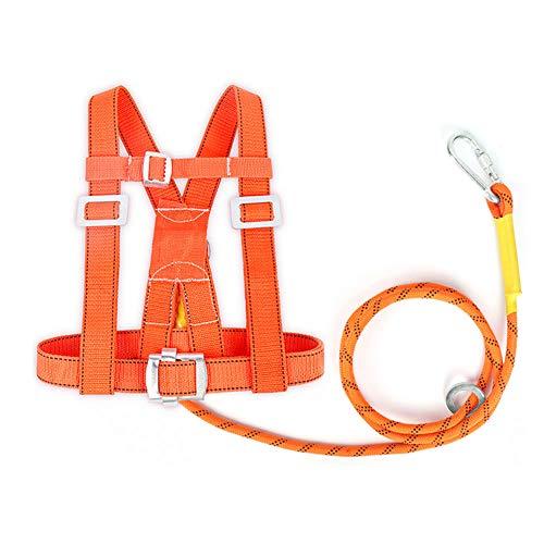 MFZTQ Kit Di Protezione Anticaduta,Mezzo Corpo Corda Di Sicurezza Lunghezza Corda Singola 2m,Diametro 14mm Dispositivo Di Buffer Alpinismo Cintura Sicurezza Attrezzature