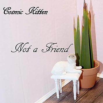 Not a Friend