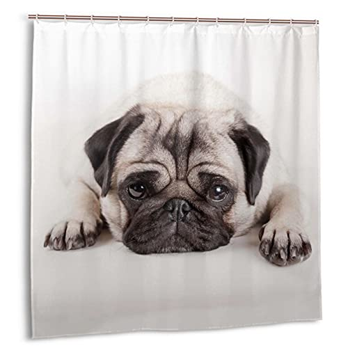 Hapyshop A Dog Lying On The Ground Pug Shower Curtain Waterproof Fabric Love Puppy White Bath Curtain 72 X 72 Inch Dog Animal Pet Bathroom Decor with 12 Hooks