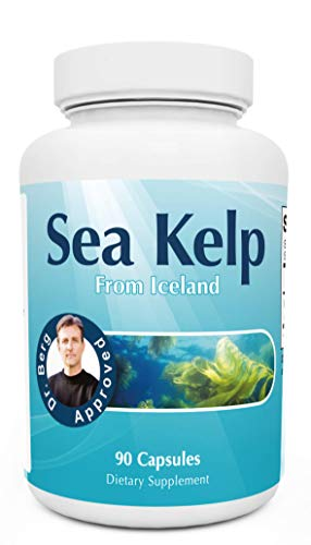 4. Dr. Berg Nutritionals – Sea Kelp