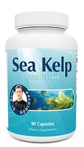 Dr. Berg's Icelandic Sea Kelp Supplement - Pure Healthy Icelandic SeaKelp - Thyroid Healthy Support Natural Iodine & Sea Nutrients - 90 Capsules