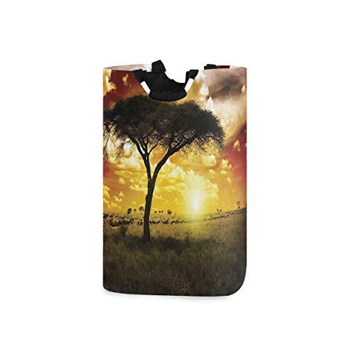 ZOMOY Multifunktionale Faltbarer Schmutzige Kleidung Wäschekorb,Einzelner Baum am verträumten afrikanischen Sonnenuntergang mit dunklen dramatischen Wolken am Himmel,Household Wäschebox