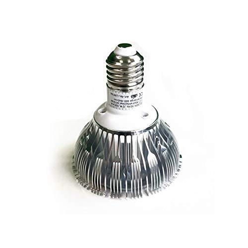 """Bio Green LED Pflanzenlampe Super Grow\"""", E27, 12 Watt, Durchmesser 95 mm für Zimmerpflanzen, Blumen und Gemüse\"""""""
