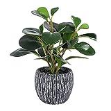 Fake Plants Mini Potted Artificial Plants Real Looking Plastic Fiddle Leaf Plantas Artificiales Decorativas Desk Plant with Black Cement Pot
