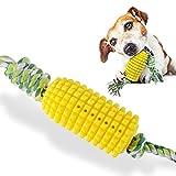 Vihimi - Spazzolino da denti per cani, giocattolo da masticare, con bastoncino molare, res...