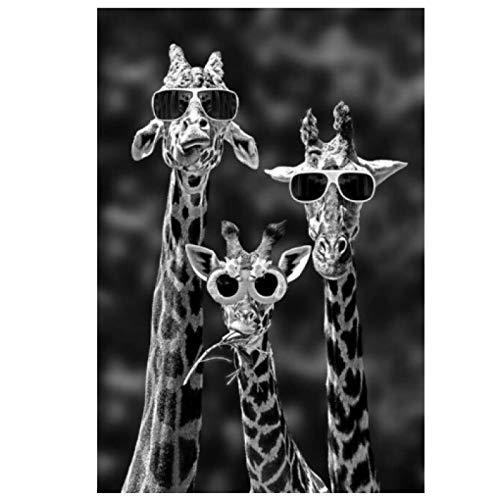 Impresión en lienzo Familia de jirafas divertidas con gafas de sol Pintura en lienzo Carteles e impresiones Animales en blanco y negro Imágenes artísticas de pared para decor del hogar Sin marco