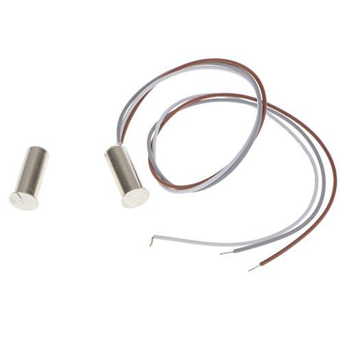 Interruptor de Contacto Magnético Empotrado Sensor Alarma de Puerta Ventana Home RoboSilver
