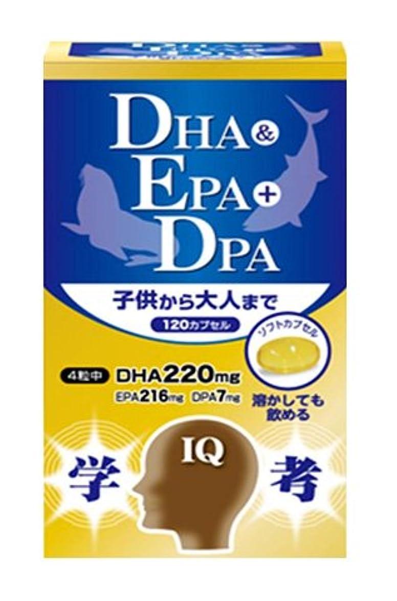 軽食宣伝銃三供堂漢方 DHA&EPA+DPA 290mg×120粒×10個セット