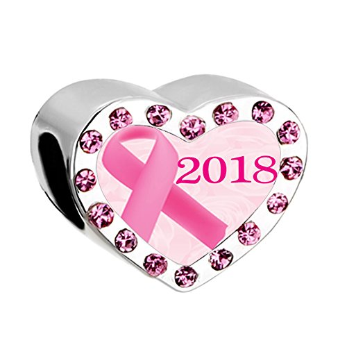 Q&Locket 2018 Pink Ribbon Breast Cancer Awareness Charm Heart Love Photo Beads for Bracelets