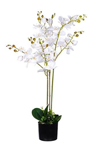 Birendy XXL Orchidee im Topf JWP363 Riesige künstliche weiße Orchidee 90cm Kunstpflanze, Kunst-Blume, Textilblüten