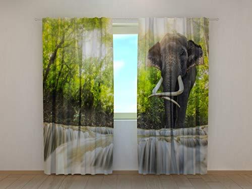 Wellmira Fotogardinen, Vorhang mit Fotodruck, Fotovorhang mit Motiv, Bedruckte Gardine, Maßanfertigung (Chiffon, 295x280 cm)