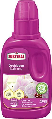 Substral Orchideen Nahrung, Flüssige Spezialnahrung für alle Orchideenarten mit natürlichen Biostimulanzien, 250 ml Flasche