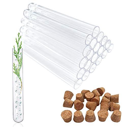 20 Stück Reagenzgläser Kunststoff 20ml,Reagenzglas,Reagenzglas mit Natur-Korken,Transparent Reagenzglas,Klein Kunststoff Reagenzglas,Reagenzgläser aus Kunststoff mit Natur-Korken,Reagenzröhrchen