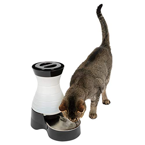 PetSafe Healthy Pet Water Station, Dog and Cat Water System with Stainless Steel...
