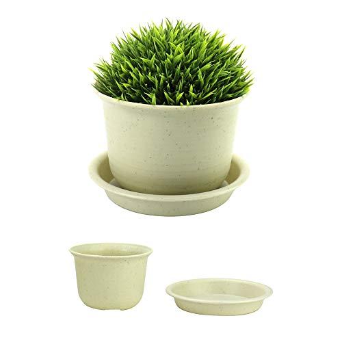 Macetas de plástico para plantas - Juego de 10 | Bonsai Ollas y Bandejas | Macetas de interior y exterior | Conjunto de plantadores de plántulas de vivero | Decoración del hogar | Pukkr (medio)
