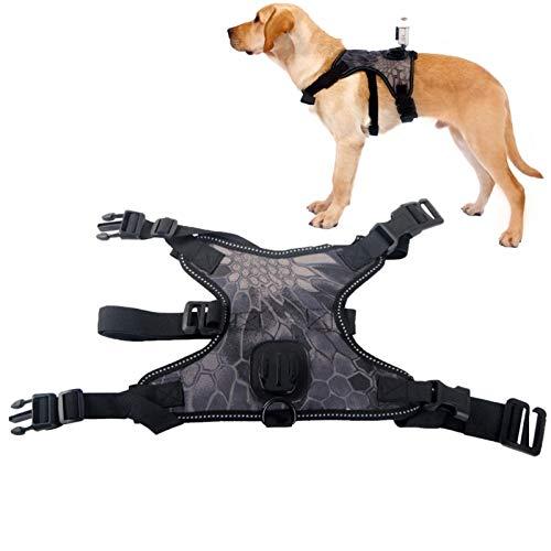 Fetch Hunde Geschirr Halterung Für GoPro Hundegeschirr Mit Action Kamera Cam Halterung Aufnahme Aus Hundeperspektive Weste Mit Einstellbarer Kragen 3 Gurt Gummi Band Für Medium Große Hunde