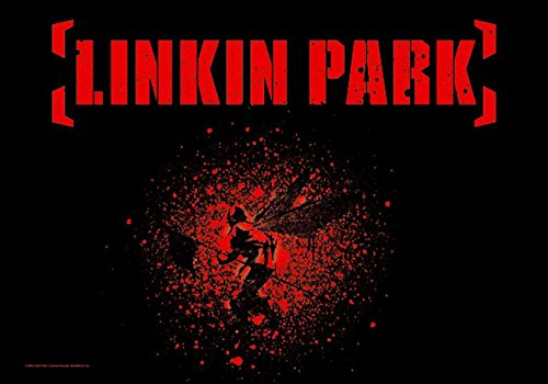 Linkin Park – Soldier Wings – posterflaggen Drapeau – Dimensions 110 x 75 cm