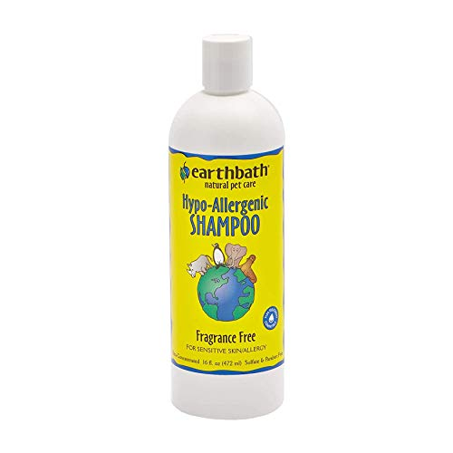 Earthbath All Natural Hypo-Allergenic and Fragrance-Free Shampoo, 16-Ounce