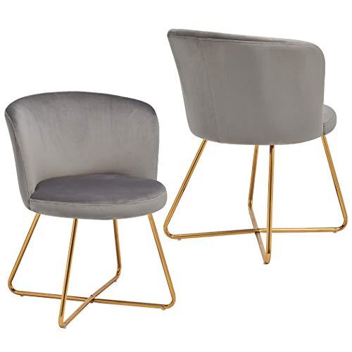 2er Set Esszimmerstuhl aus Stoff Samt Polsterstuhl Retro Design Stuhl mit Rückenlehne Besucherstuhl Metallbeine Farbauswahl Duhome 8076X, Farbe:Grau, Material:Samt