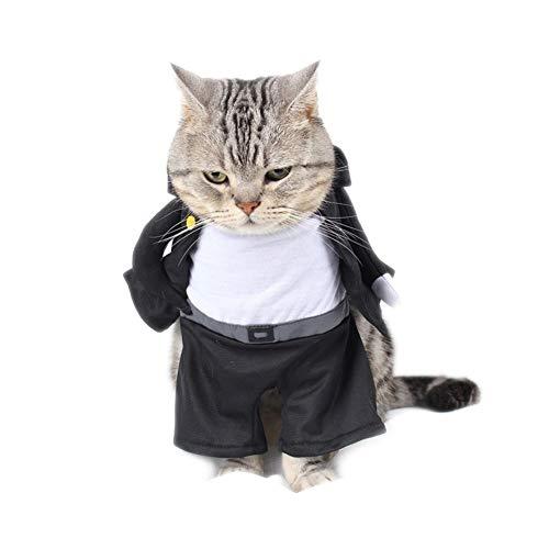 W-L Katzenbekleidung, schwarz, für Jungen, lustige Katzenkleidung, Kostüm, Chat-Kleidung für Haustiere (Farbe: Bild Farbe, Größe: S)