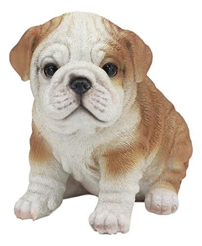 Ebros Realistic Lifelike Bulldog Puppy Statue 6' Tall British Bulldog Figurine