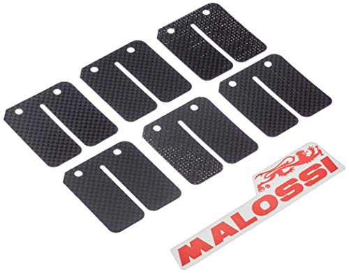 Membrana plättchen Malossi Carbon para Kymco Sf10
