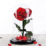 Rosa Bella y Bestia Forma CORAZÓN - Rosa Eterna en Caja Regalo 28cm - Regalo Amor con Tarjeta DEDICATORIA - Rosa Elegante
