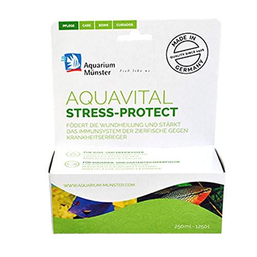 Aquarium Münster aquavital stress-protect 250 ml für 1.250 l