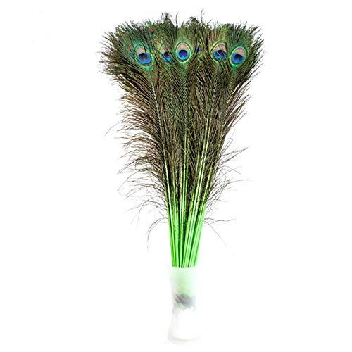 Creny - 20 Plumas de Pavo Real de 80 a 90 cm para decoración de casa, Boda, Fiesta, Bricolaje