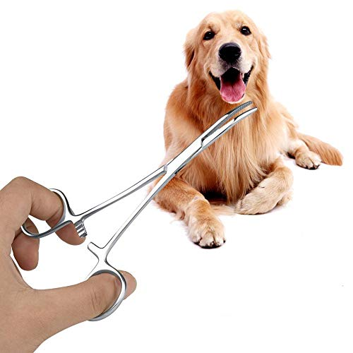 El mosquito del hemostat del acero inoxidable, 4.9inch / 5.5inch perro de la oreja que limpia la abrazadera recta el gato curvó el kit del fórceps de las pinzas del pelo del oído de la extremidad(S)