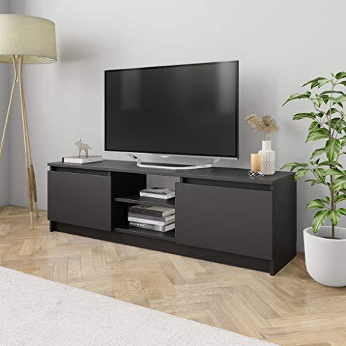 vidaXL TV Schrank mit 2 Schubladen 2 Fächern Lowboard Fernsehtisch Fernsehschrank TV Möbel Sideboard Schwarz 120x30x35,5cm Spanplatte