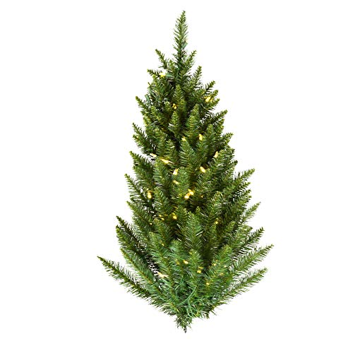 Vickerman 3' Camdon Fir Wall Tree with 50 Warm White LED Lights