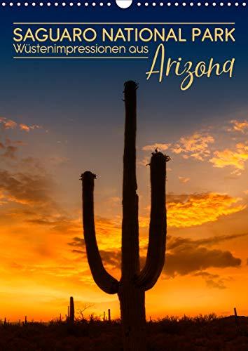 SAGUARO NATIONAL PARK Wüstenimpressionen aus Arizona (Wandkalender 2021 DIN A3 hoch)