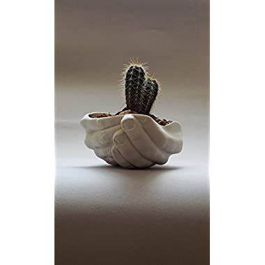White porcelain small hand sculpture planter gift modern pottery succulent bowl by SinD studio