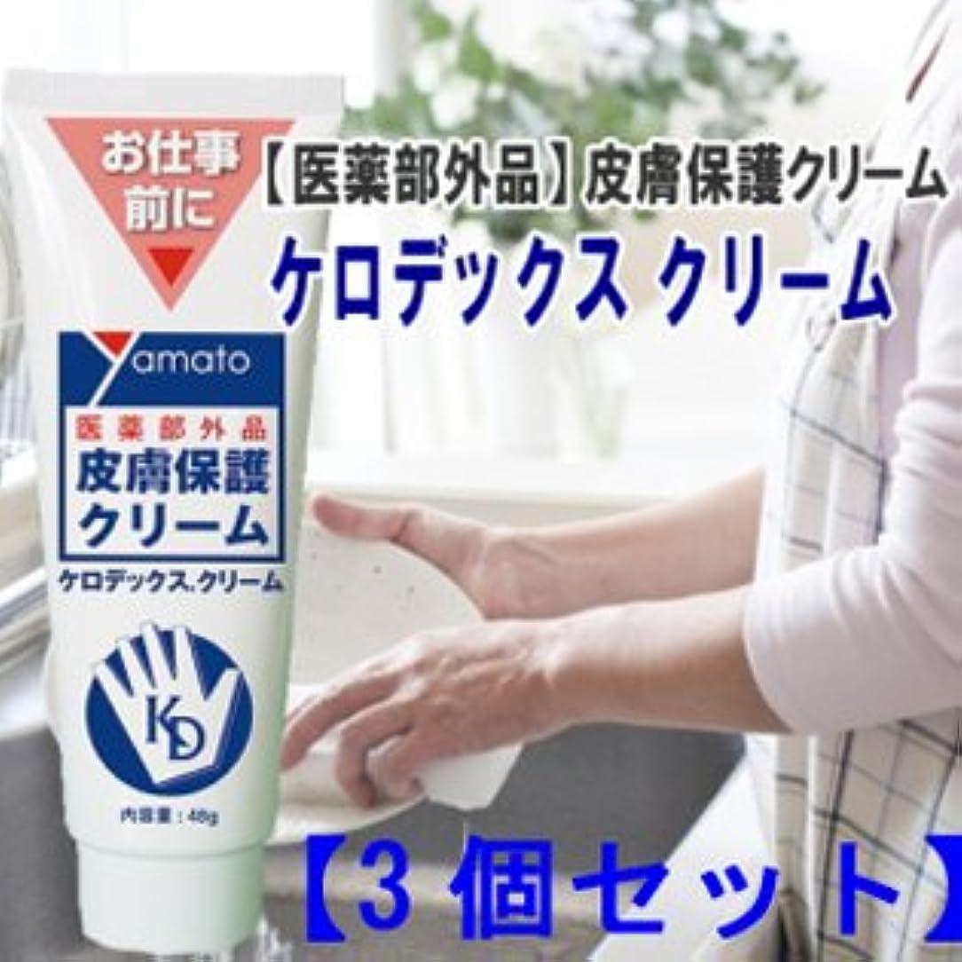 デザイナー影のある第二医薬部外品 皮膚保護クリーム ケロデックスクリーム48g 3個セット