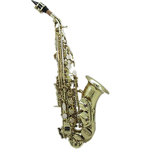 SKY Bb Curved Soprano Saxophone with Case and Accessories