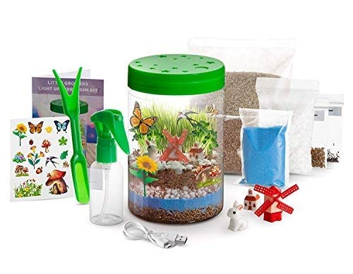Momila Light-up Terrarium Kit for Kids, Gifts for 5 6 7 Years olds, Boys and Girls ,stem Toys and Educational Crafts ,Science Kits w/ LED Light On Lid & Lifelike Miniatures