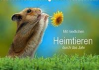 Mit niedlichen Heimtieren durch das Jahr (Wandkalender 2022 DIN A2 quer): Niedliche Haustiere verschiedener Arten begleiten sie durchs Jahr. (Monatskalender, 14 Seiten )