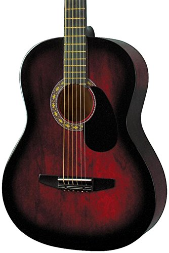 Rogue Starter Acoustic Guitar | Amazon