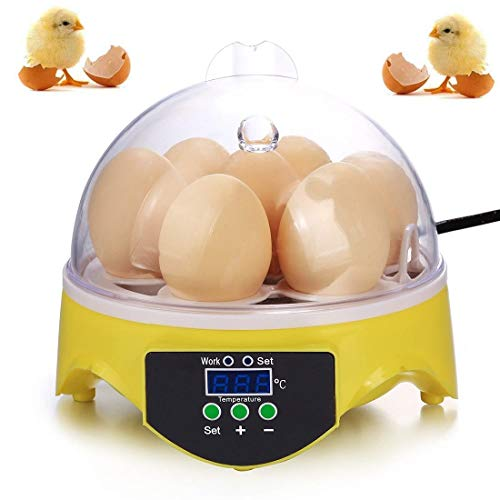 Mini Egg Incubator for Hatching Eggs, 7 Eggs Poultry Hatcher Small Digital Egg Incubator for Hatching Chicken Pheasant Quail Birds Eggs with Digital Temperature Control, Crystal Clear Cover & Fan