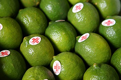 Limetten - für Cocktail Saft Smoothie - frisch & saftig & gesund & vitaminreich - 48-54 Stück/Kiste - Zitrusbilliger