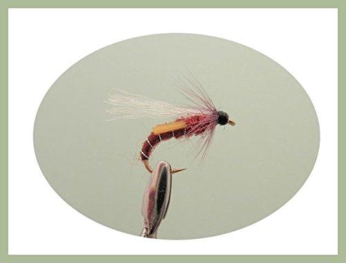 6Stück Rotwein Emerger Forelle Fliegen Wahl der Größen erhältlich (gemischt) Verschieden