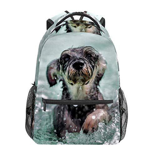 School Backpack Shar Pei Dog Swimming Casual Travel Laptop Daypack Canvas Book Bags for Woman Girls Boys Student Adult Men