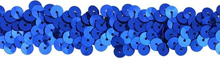 Decorative Trimmings 14010-C-003F-051 Stretch Sequin Trim, 7/8